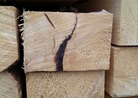 Классификация дефектов древесины