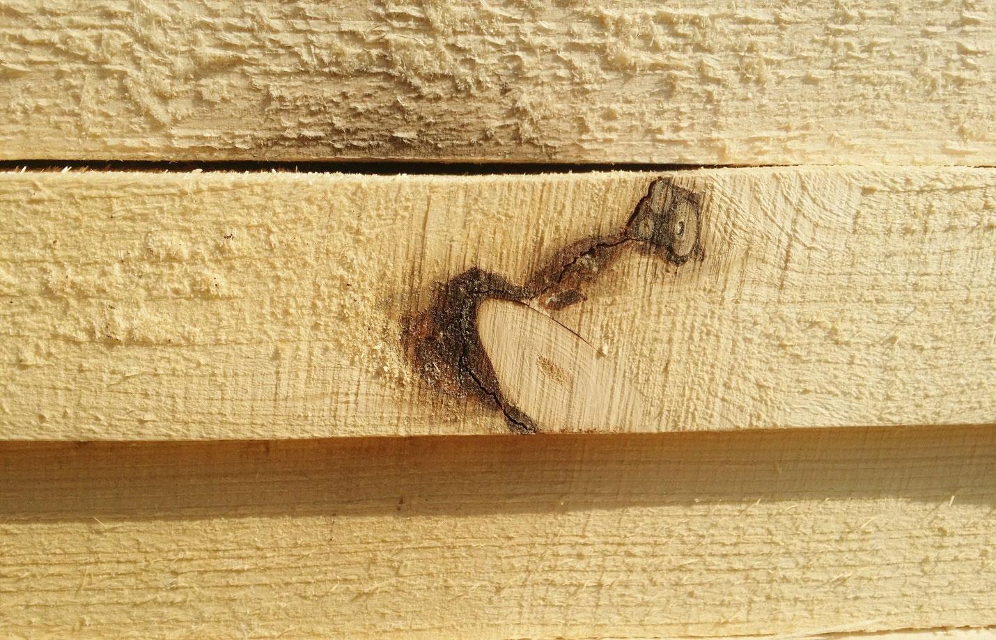 Сучки и трещины пиломатериалы